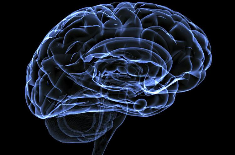 Vesículas Encefálicas