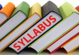 jamb government syllabus