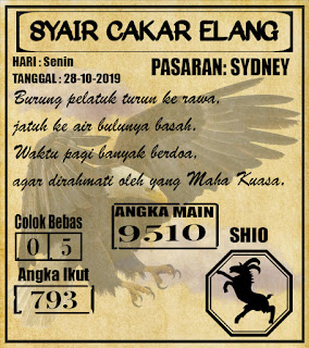 SYAIR SYDNEY 28-10-2019