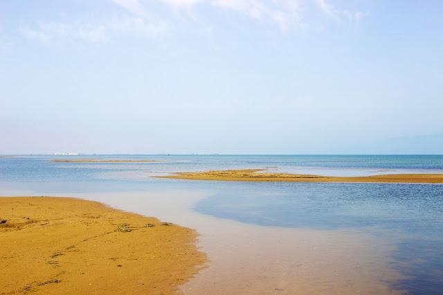 Playa de los Eucaliptus, Delta del Ebro