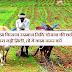 उत्तर प्रदेश के करीब 42 लाख किसानों को नहीं मिली पीएम किसान सम्मान निधि की छठी किस्त