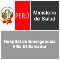 Convocatorias hospital de emergencias villa el salvador for Trabajo en villa el salvador