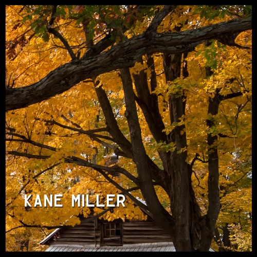 Kane Miller Unveils New Single 'Coral Reef and Morning Dew'