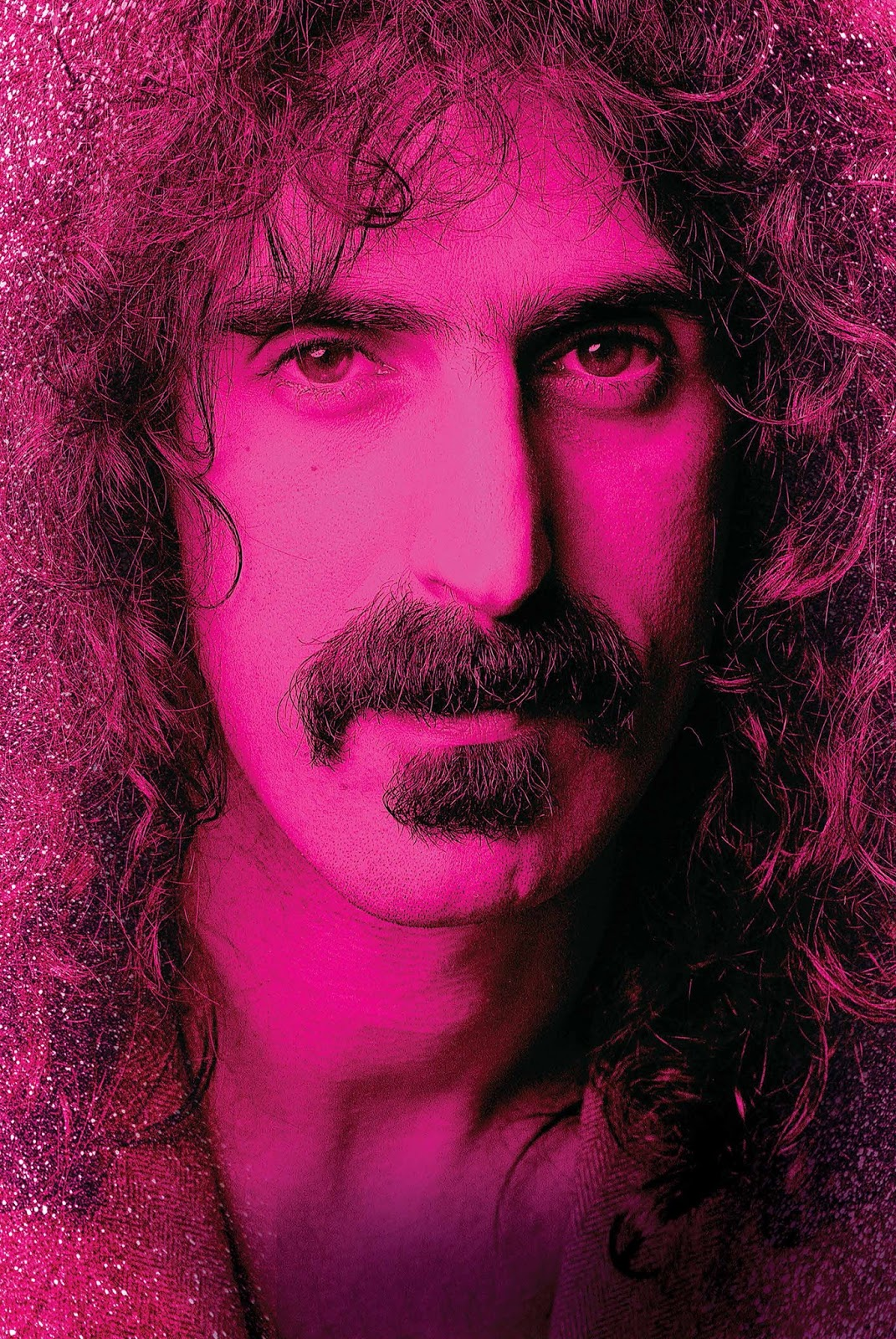 cranes are flying: Eat That Question: Frank Zappa in His Own Words