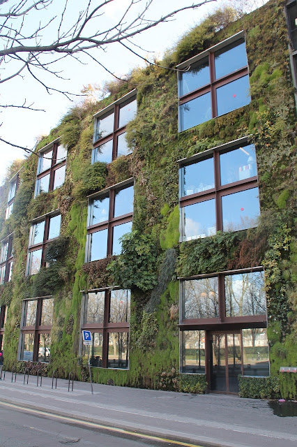 Biofilia en la nueva arquitectura