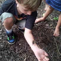 importance of outdoor environment for preschool biology learning in the outdoor classroom