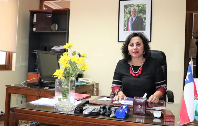 Ingrid Schettino, Seremi de Gobierno Región de Los lagos