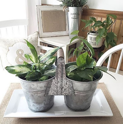 Galvanized Tin Planters