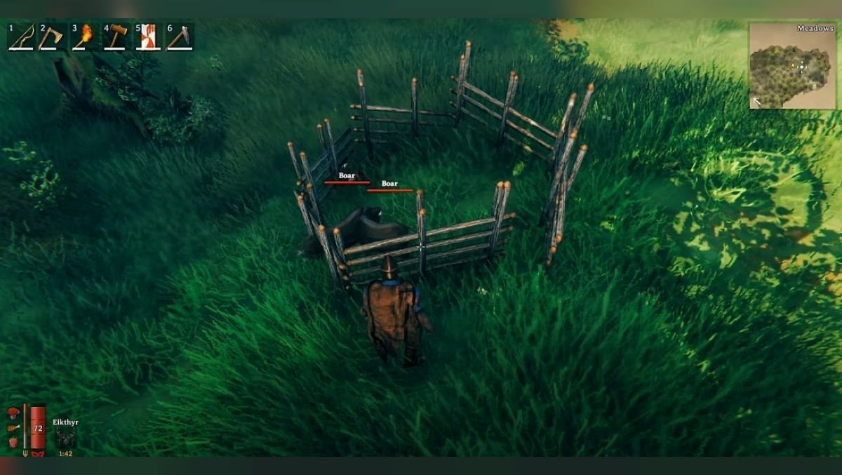 How to tame a boar in Valheim