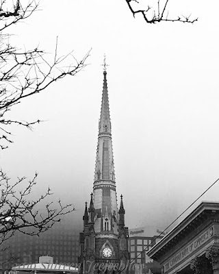 St. James Cathedral Spire in the fog next to  bank and under bare tree branches