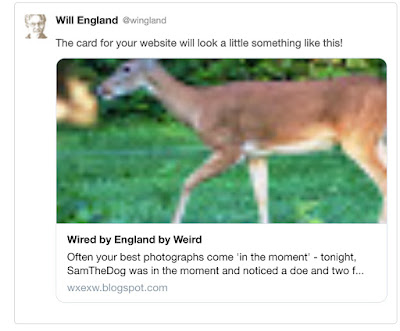 Twitter Card Example from a Blogger Post