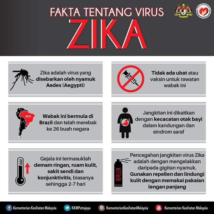 Fakta Tentang Virus Zika