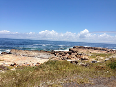 Cobra rent,  half day tour, last tour point cape of good hope, picture of the beach