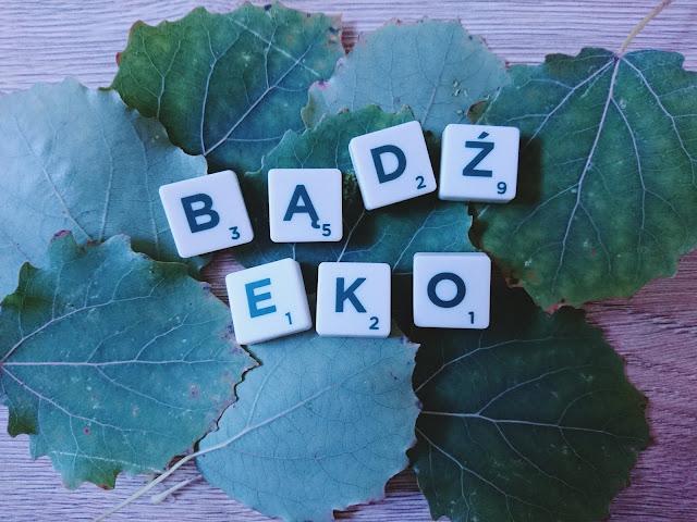 ekologia, zero waste