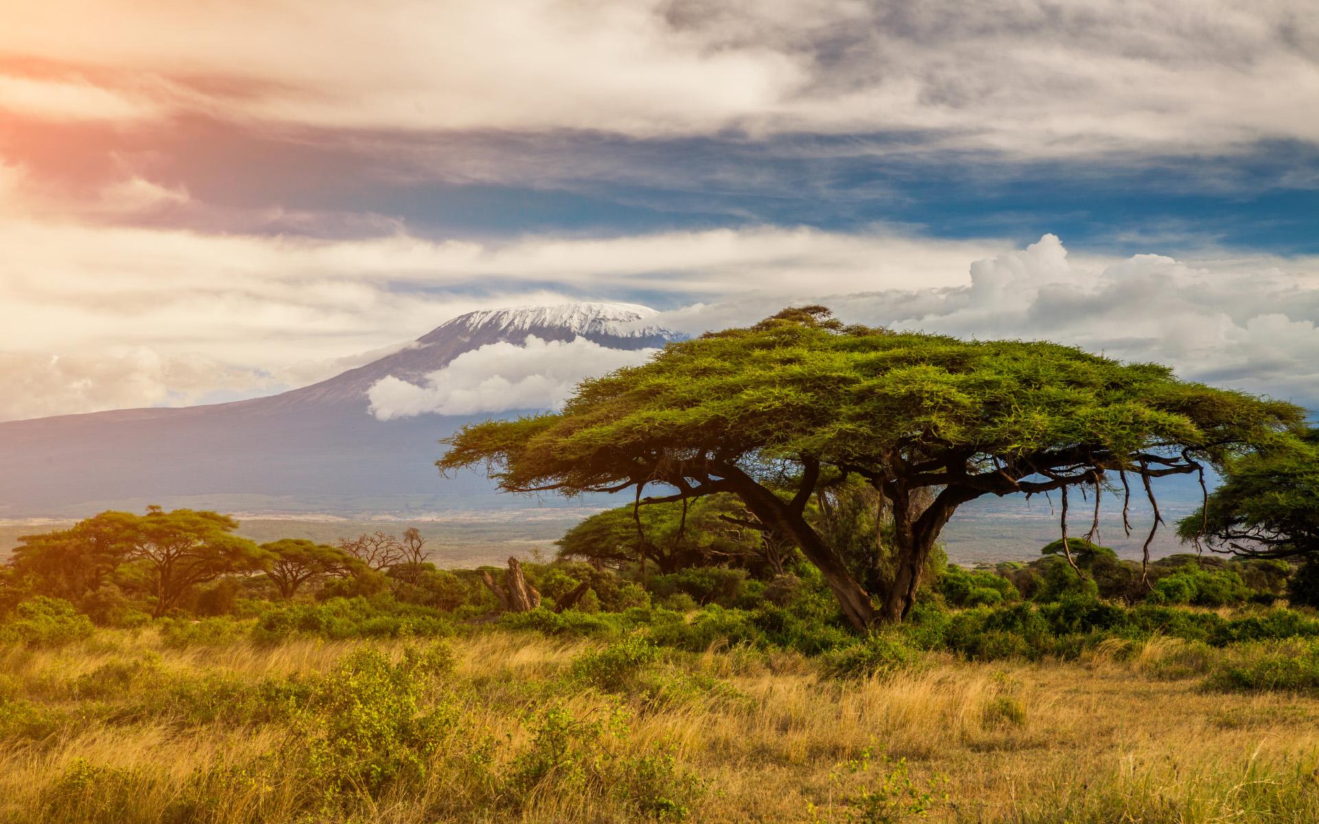 Национальным парком Килиманджаро