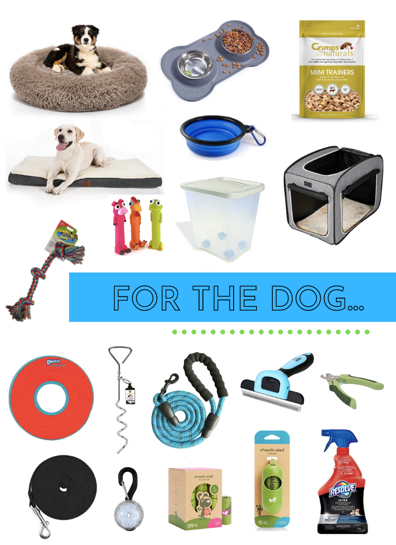 Favourite Amazon Finds for Pets