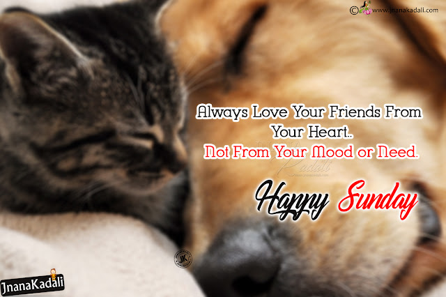 happy sunday quotes in english, english happy sunday wallpapers greetings, best words on friendship in english