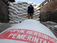 Sejumlah Petani di Kabupaten Enrekang Sulit Dapatkan Bantuan Pupuk Bersubsidi