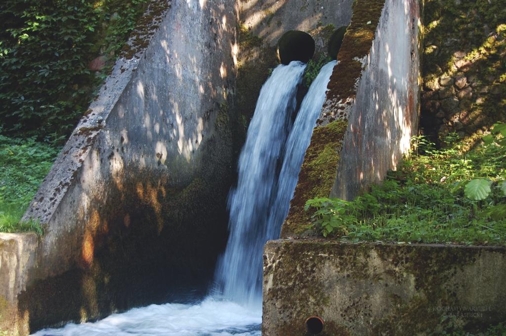 Rezerwat Źródła Rzeki Łyny