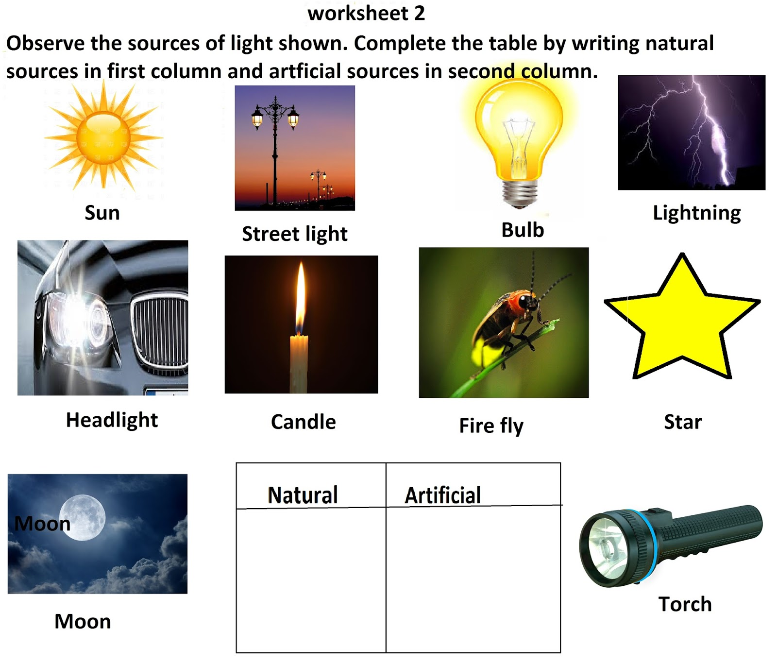 Amazing Science Worksheets