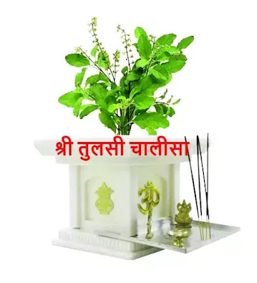 tulsi chalisa lyrics,tulsi mata ki chalisa,SHREE TULSI CHALISA IN HINDI