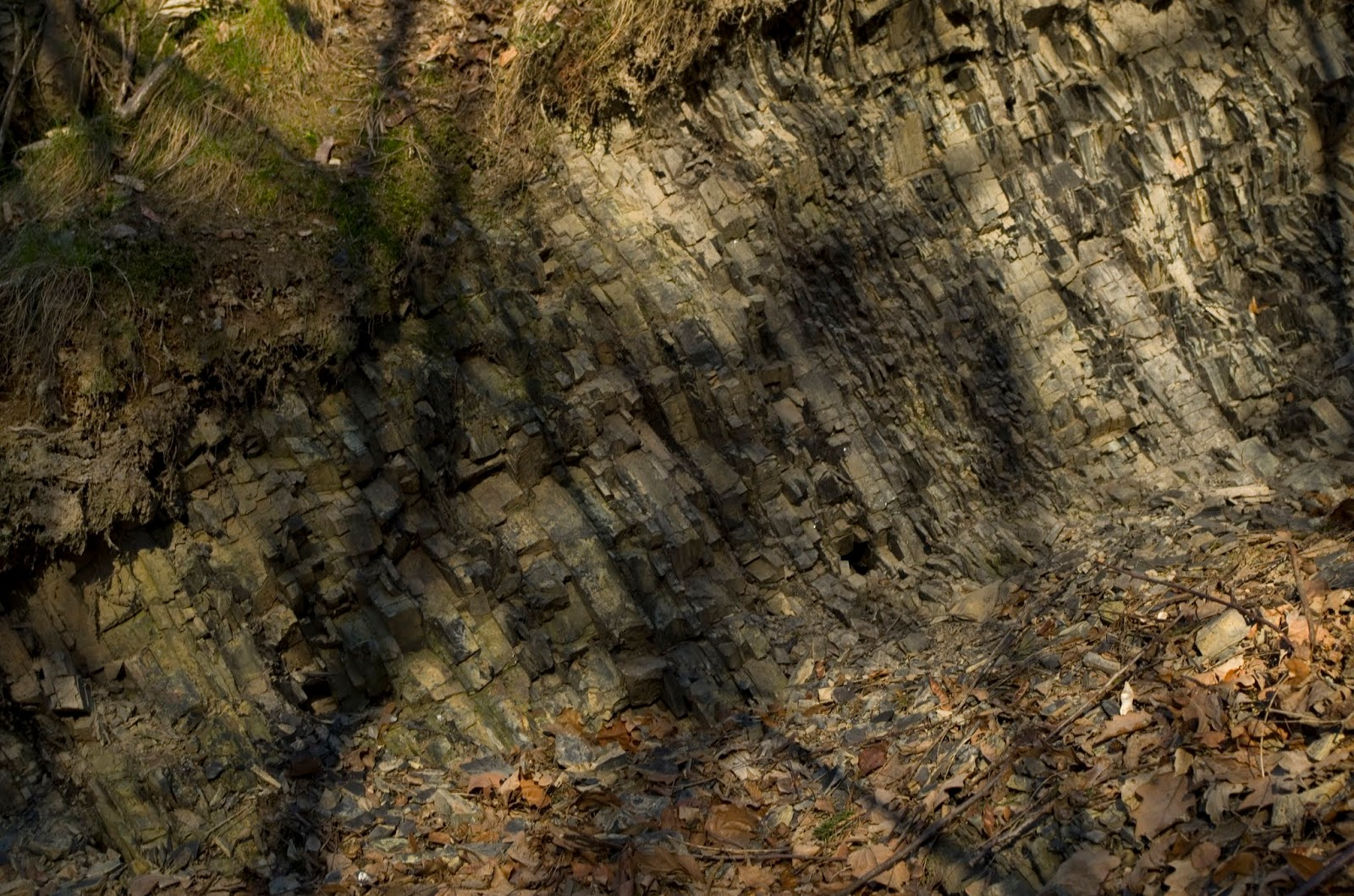Dlaczego można stosować datowanie radiometryczne na skałach osadowych?