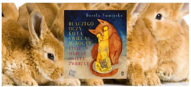 http://madreksiazki.org/kategorie/biologia-i-chemia/dlaczego-oczy-kota-swieca-nocy-inne-sekrety-swiata-zwierzat/