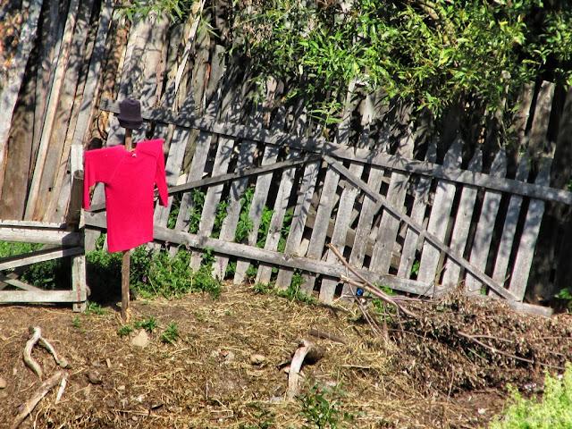 Gardul ca element auxiliar - blog FOTO-IDEEA