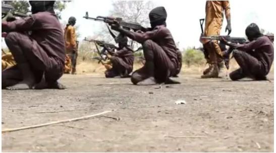 Boko Haram releases video of children undergoing combat training in Unnamed camp in Nigeria
