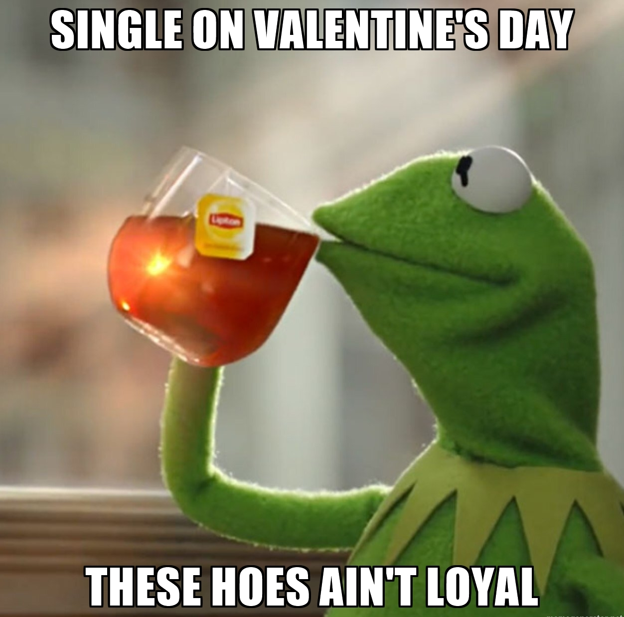 Relationship Top 19 Very Funny Valentine Day Memes Don T To Stop