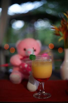 boneka beruang pink