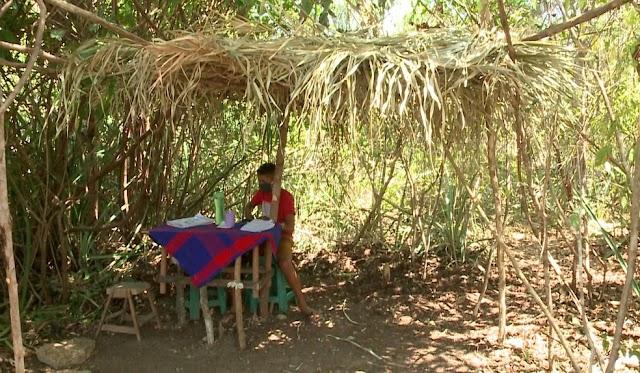 Pai monta barraca de palha na mata para filho ter acesso à internet e assistir a aulas no PI