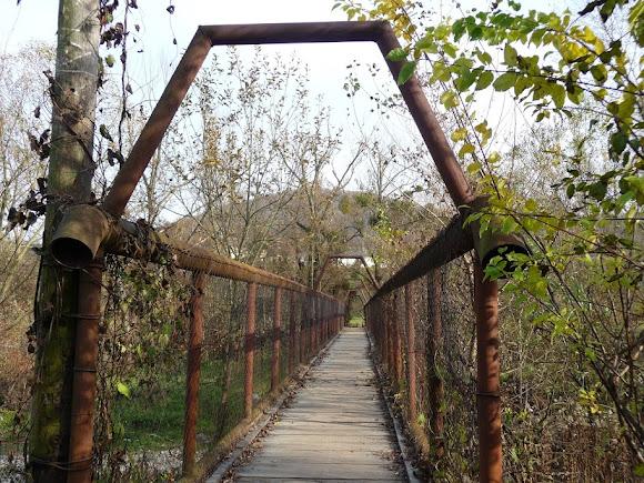 Голубине. Міст через річку Пиню