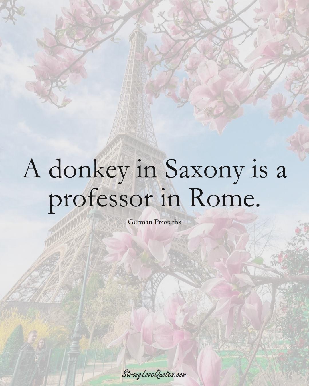 A donkey in Saxony is a professor in Rome. (German Sayings);  #EuropeanSayings