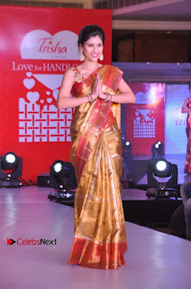 South Indian Celebrities Pos at Love For Handloom Collection Fashion Show  0087.jpg