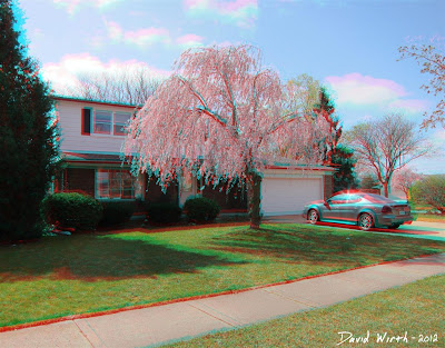 3D house car tree anaglyph