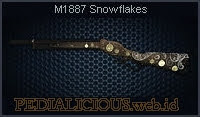 M1887 Snowflakes