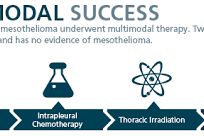 Multimodal Therapy Amend Survival For Mesothelioma Patients