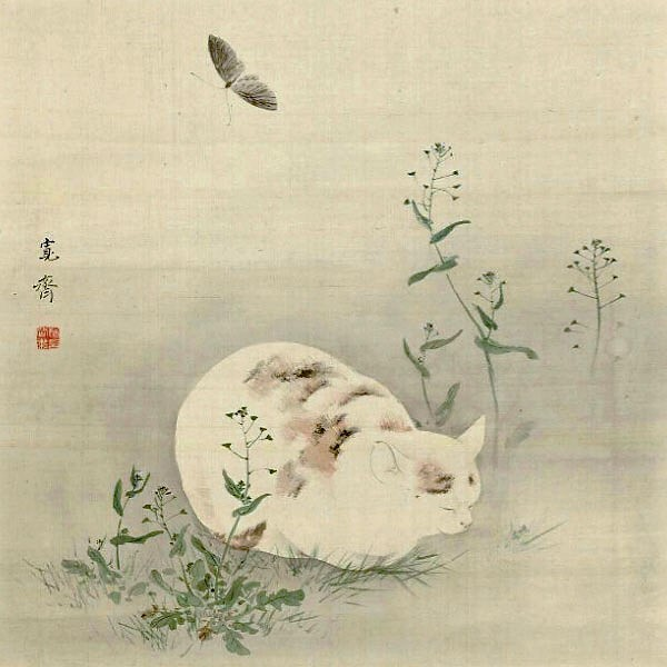 Sleeping Cat by Mori Kansai