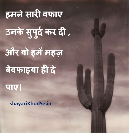 bewafa shayari images collection, bewafa shayari images download