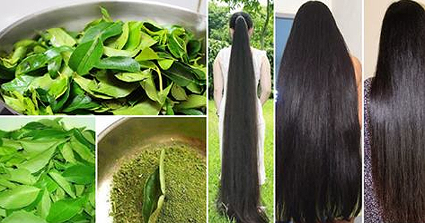 How To Stop Hair Loss And Get Long, Black And Thick Hair Naturally