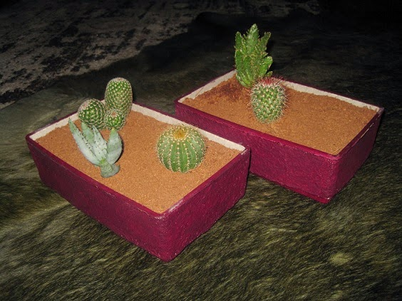Descomplicándome: Papel maché - Macetas para cactus