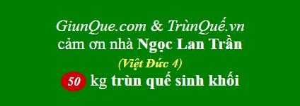 Trùn quế Việt Đức 4