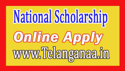 How to Apply for National Scholarship Online