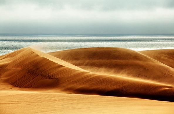 В Аравийской пустыне строят гигантский город роботов