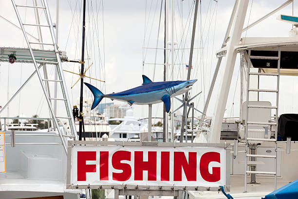 Fishing Charters – Part of a Great Vacation