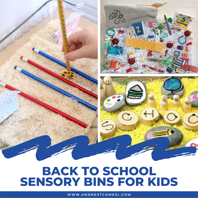 Back to school sensory bins for toddlers and preschool kids