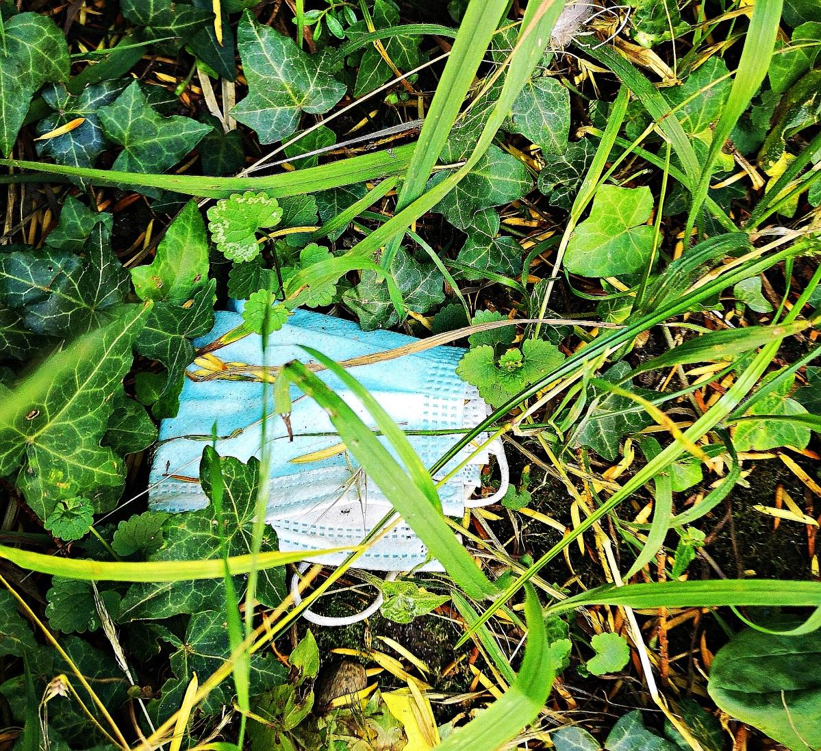 Corona hinterlässt Spuren in der Natur