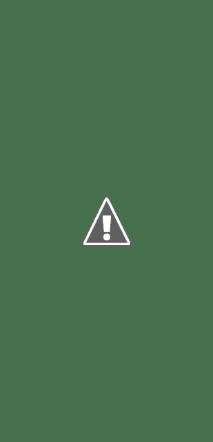 Résultat de la recherche en cadrant Lens sur l\'avant de la voiture