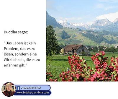 Wieder zurück in den siebten Himmel von Bad Zurzach